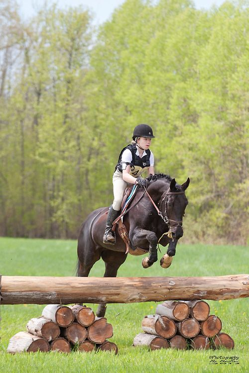 Horses jumping cross country - photo#30