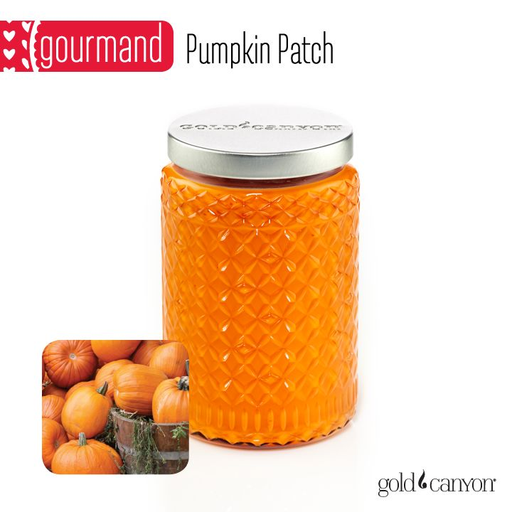 ~Pumpkin Patch~ Remember the fun of a hayride in a pumpkin patch? This is just the scent to bring back the memory! It's indulgent, spiced and warm with notes of pumpkin, vanilla, nutmeg & ginger