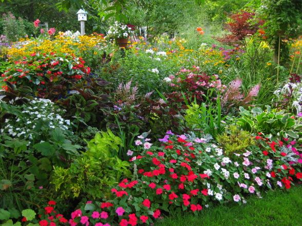 Annuals like colorful impatiens fill out the front edges
