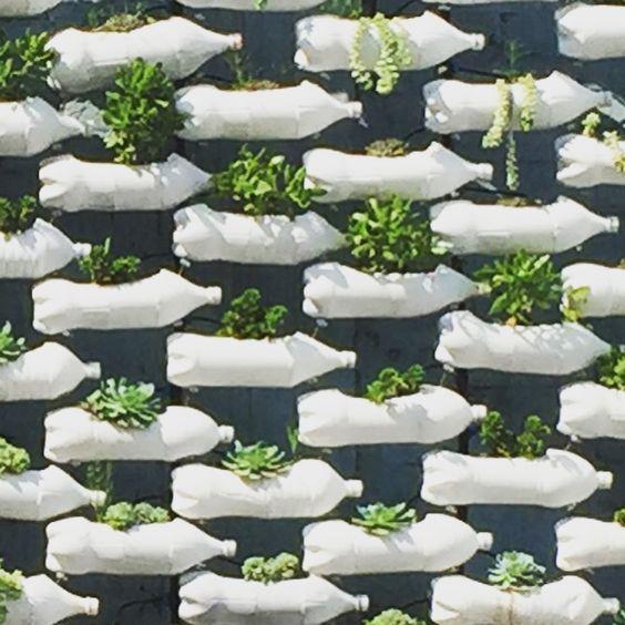 Jardim vertical com garrafa PET – Diversas ideias