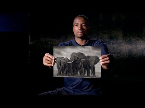 "Powerful words from these NBA stars: ""....when the buying stops, the killing can too...""   'No Hype' NBA Cares, Nick Brandt, and WildAid 30s - YouTube"