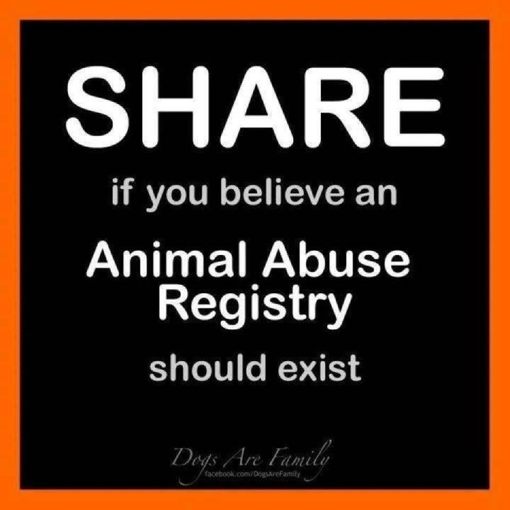 should animal share the same rights Share tweet pin next » people for the ethical treatment of animals  what rights should animals have animals have the right to equal consideration of their interests for instance, a dog most certainly has an interest in not having pain inflicted on him or her unnecessarily  however, animals don't always have the same rights as.
