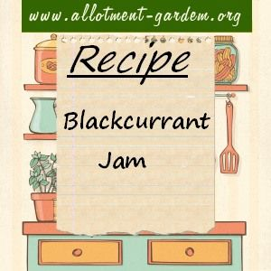 Recipe for Blackcurrant Jam. Easy peasy to make as blackcurrants are full of pectin and have enough acid. Makes about 8 lbs (3.6 kgs) of jam.