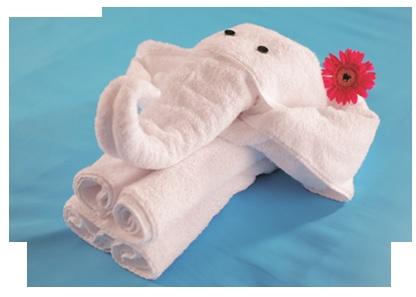 Le pliage de serviette en forme d''éléphant