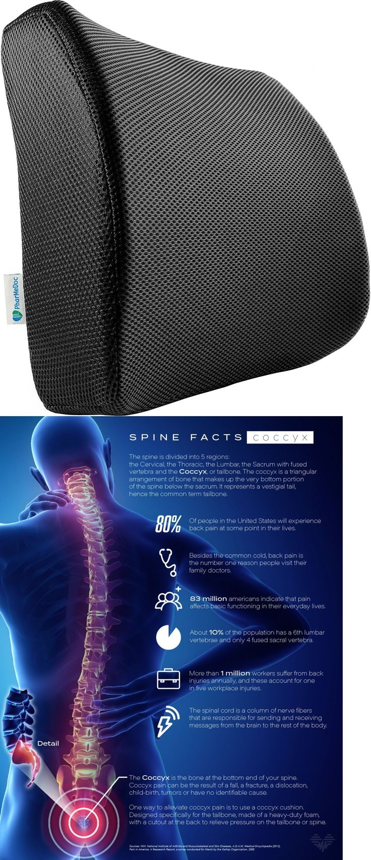 Seat and Posture Cushions: Pharmedoc Lumbar Support Seat Cushion - Lower Back Pain Office Posture Corrector -> BUY IT NOW ONLY: $31.98 on eBay!