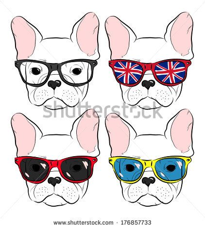 set of cute muzzle French Bulldog in glasses by N.SH, via Shutterstock