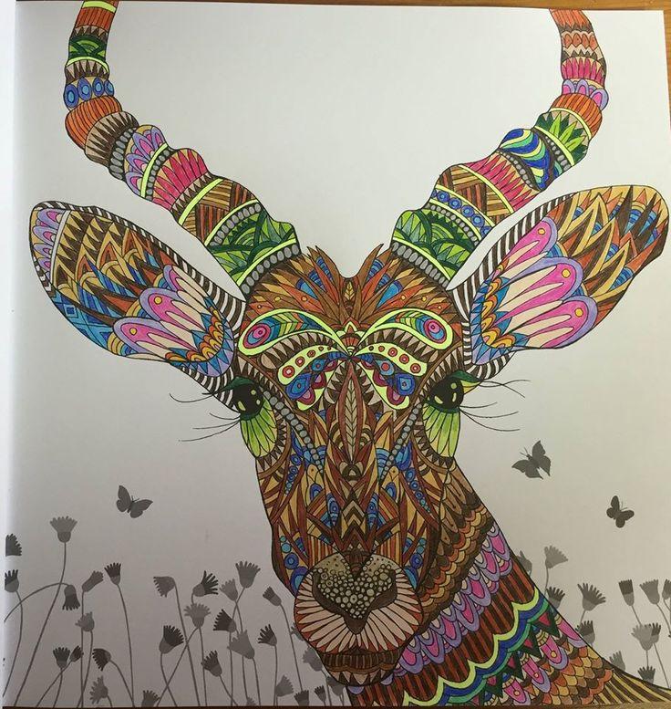 Facebook Photophpfbid Coloring SheetsAdult