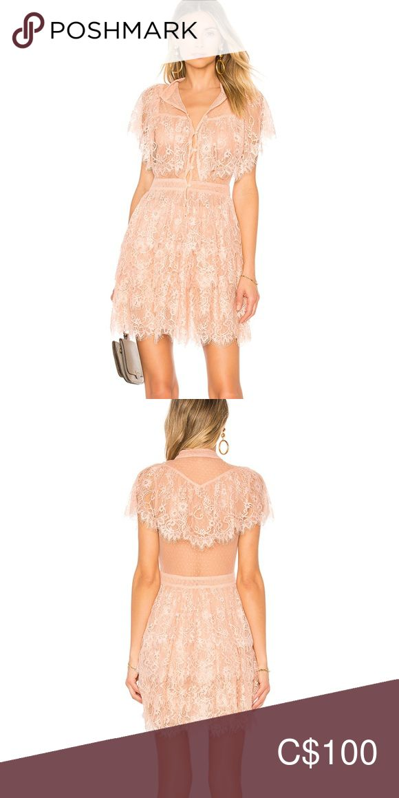 House of Harlow 1960 x REVOLVE lace dress This beautiful rose coloured House of ... 2