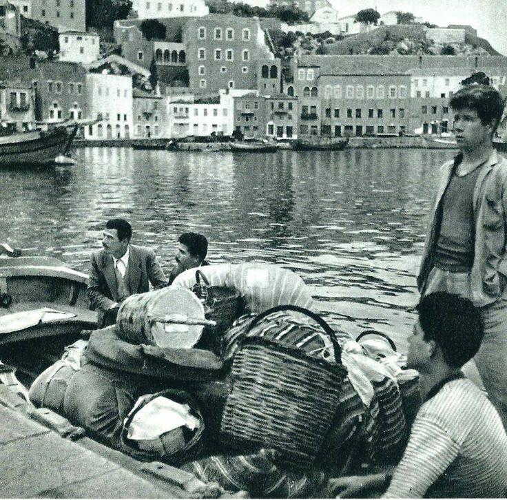 Hydra 1950s