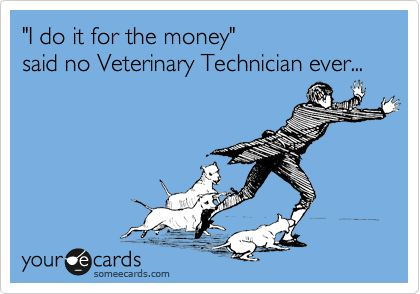 'I do it for the money' said no Veterinary Technician ever...true story - While I was never a vet tech, I worked with a great group of them and could not stop laughing when I saw this. Love you guys and miss you!