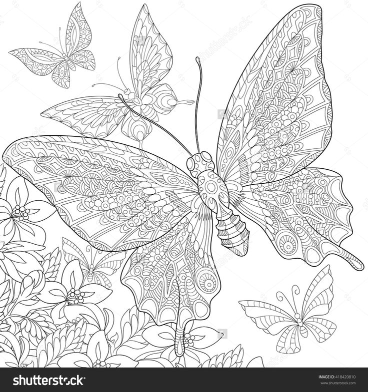 Zentangle stylized five cartoon butterflies flying around flowers. Hand drawn sketch for adult antistress coloring page, T-shirt emblem, logo or tattoo with doodle, zentangle, floral design elements. #418420810 - Larastock