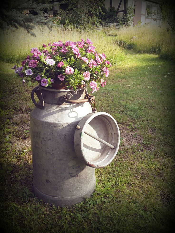 Alte Milchkanne und Mini Petunia - old milk can and millionbells in our garden ~ get pinspired