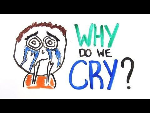 *AsapScience Explains Why We Cry - http://www.youtube.com/watch?feature=player_embedded=QGdHJSIr1Z0
