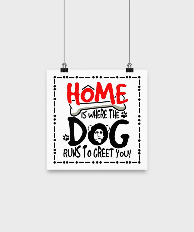 Home Is Where The Dog Runs To Greet You Poster 🐾❤️️😘 Grab yours now!  Get it here: https://www.theabsolutegift.com/dogposterhome