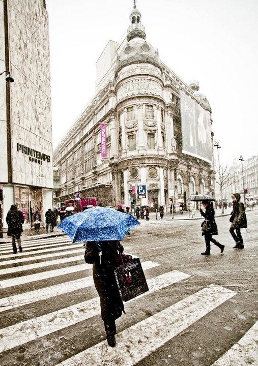 Paris, Printemps in winter