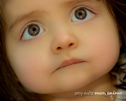 The eyes that tell a thousand stories .... look deep and see the sky through the trees.SHE is just BEAUTIFUL