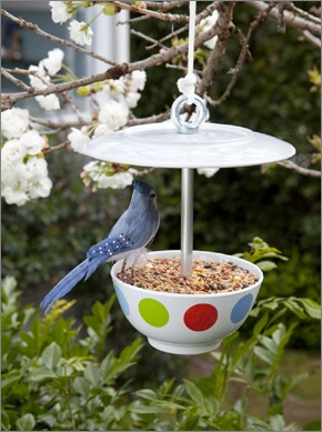 Create this wonderful bird feeder and watch the local birds enjoy your latest creation