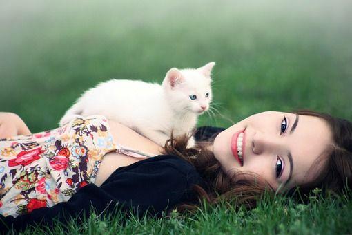 Terungkap Mitos atau Fakta Kucing Menyebabkan Mandul? - Sharing Kucing