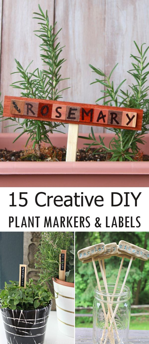 English garden plant labels - 15 Creative Diy Plant Markers And Labels
