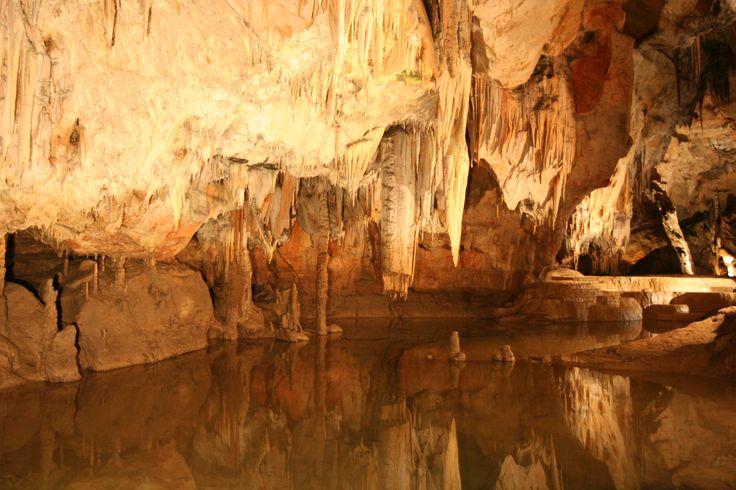 Jaskyna Domica - je najznámejšou a najdlhšou jaskyňou Národného parku Slovenský kras. Je preslávená aj vzácnymi archeologickými nálezmi, bohatým výskytom sintrových štítov a bubnov, ako aj početným druhovým zastúpením netopierov. Nachádza sa tu aj najvýznamnejšie jaskynné nálezisko bukovohorskej kultúry z neolitu (4000 rokov pred n. l.). Zadné časti jaskyne boli pravdepodobne posvätnými a kultovými miestami, kde sa zachovali kresby uhľom. Unikátny je najmä nález hrotu oštepu zo starej doby…
