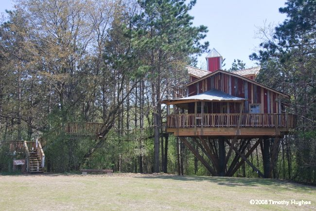Image result for epic systems wisconsin treehouse