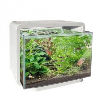 ber ideen zu 60 liter aquarium auf pinterest. Black Bedroom Furniture Sets. Home Design Ideas