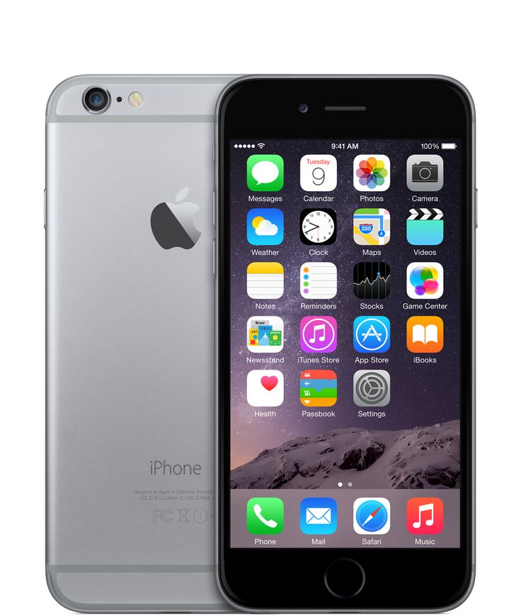 iPhone 6 in Space Grey - Mine has a black leather case that covers the back & the sides.