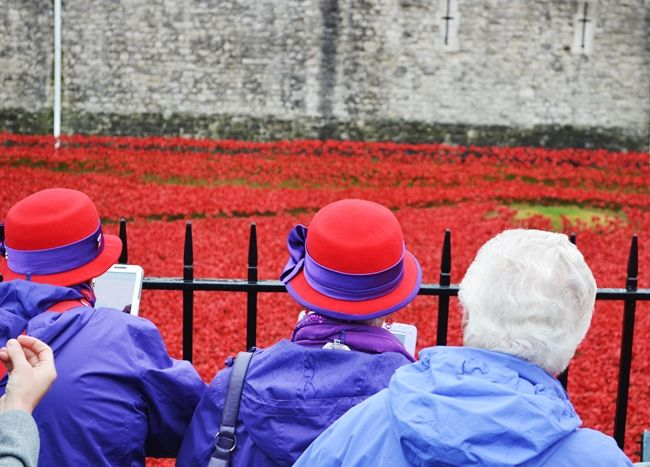 Torre de Londres, Tower Bridge y amapolas - Tower of London, Tower Bridge and poppies