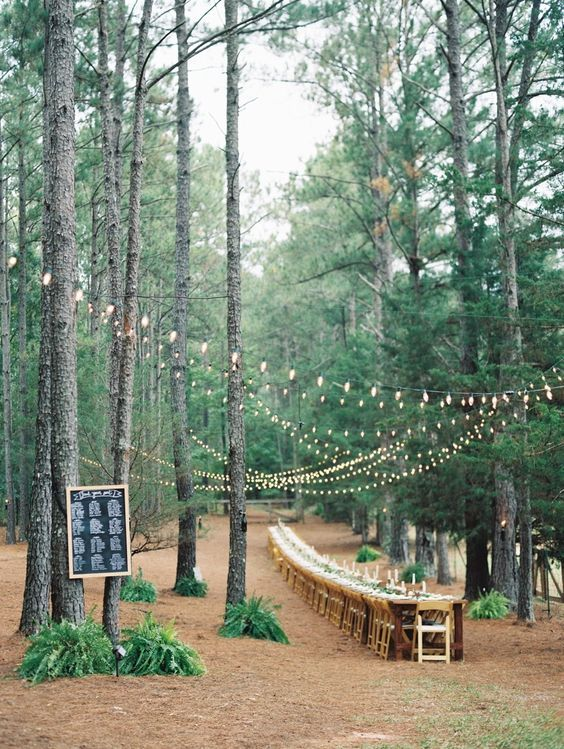 Weddding reception in wood | long table wedding reception #woodland                                                                                                                                                                                 More