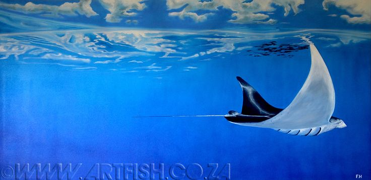 Manta. Acrylic on canvas. H800 x 1620mm. Please contact me or see price list.