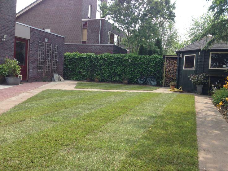 strakke tuin met graszoden