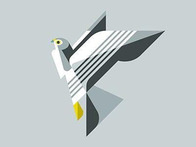 Peregrine Falcon WIP by Josh Brill