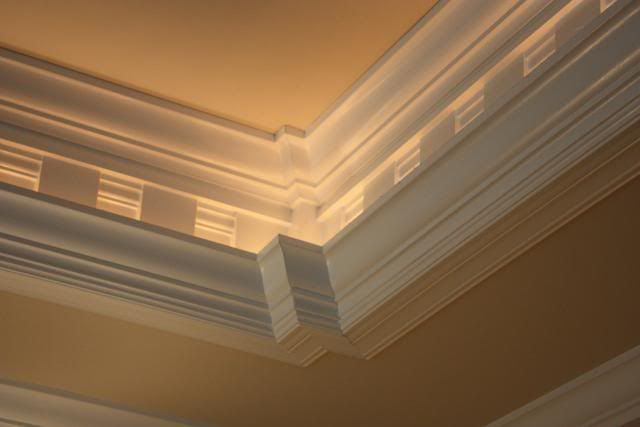 Tube lighting in tray ceiling. Great for bedroom.