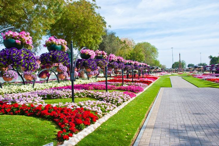 The First park in  Guinness World Record by The Largest Number of Hanging Flower Baskets    Al Ain, United Arab Emirates..........largest working floral park...................Imagine watering and taking care of this park! In fact, can you spot any water?