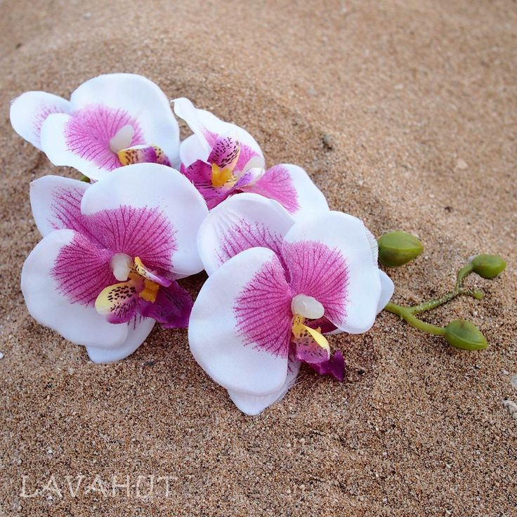 Orchid Purple/White Hawaiian Flower Hair Clip   #flowerclips #hairaccessories #hairclips #flowerinhair #hairblossoms