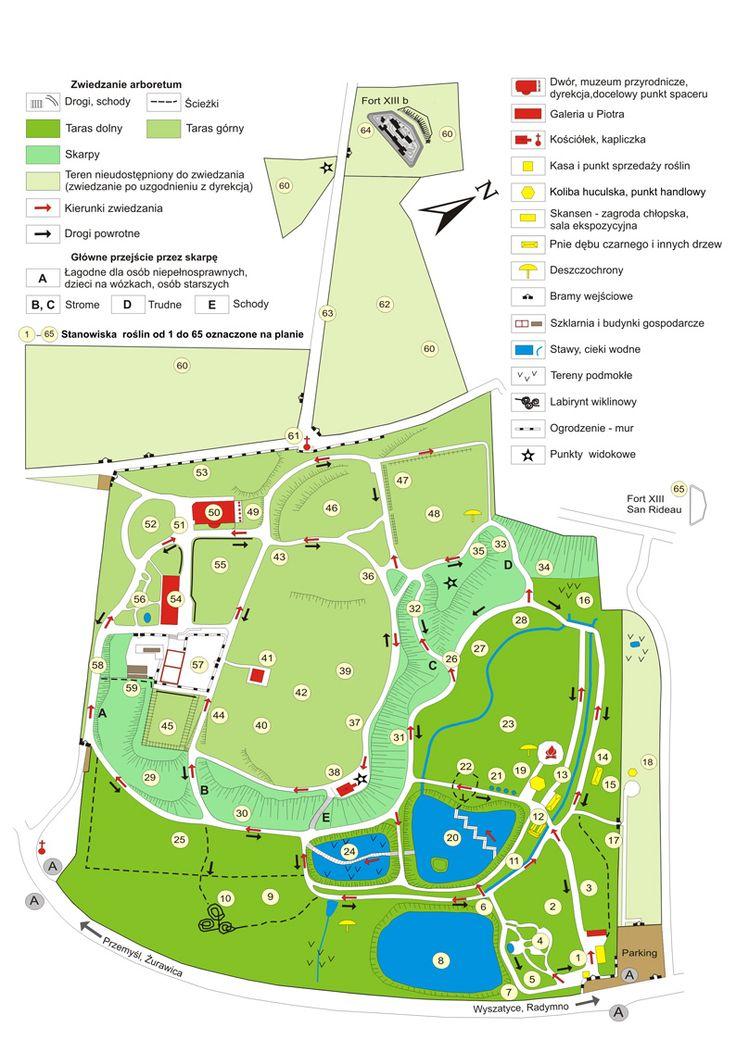 Plan Arboretum w Bolestraszycach