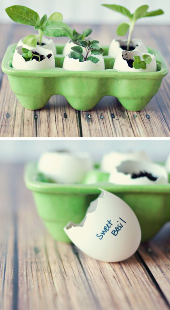 Eggshell Seed Starters | Click Pic for 22 DIY Spring Crafts for Kid to Make | Easy Spring Craft Ideas for Toddlers