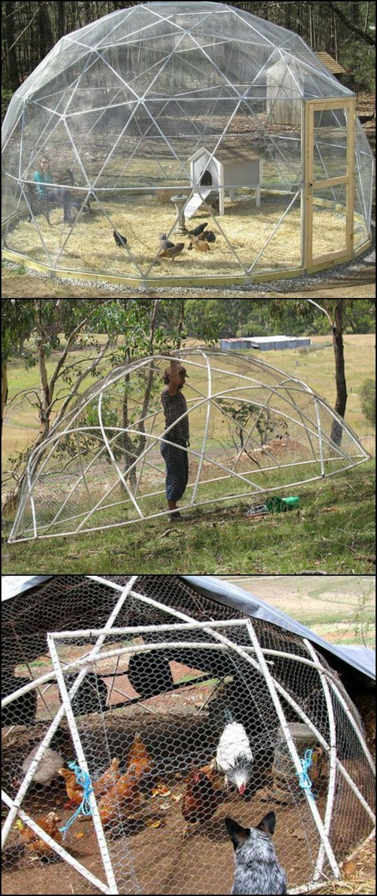 Need a chicken tractor? A geodesic chook dome might just have the features you're looking for! By choosing a geodesic structure to house your chooks, you end up with circular beds. It is also easier to move around the yard... Learn more about what makes a geodesic chicken tractor great by heading over to our site at http://diyprojects.ideas2live4.com/2016/02/18/how-to-build-a-geodesic-chicken-coop/ #howtobuildanaviary #buildaviary