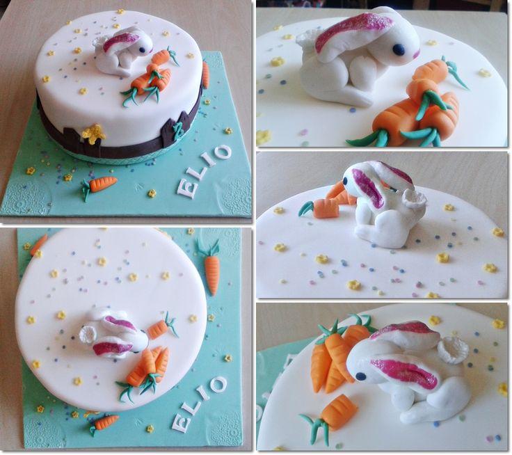 Gâteau Lapin dans sa prairie Saveurs chocolat praliné (all is homemade :P)