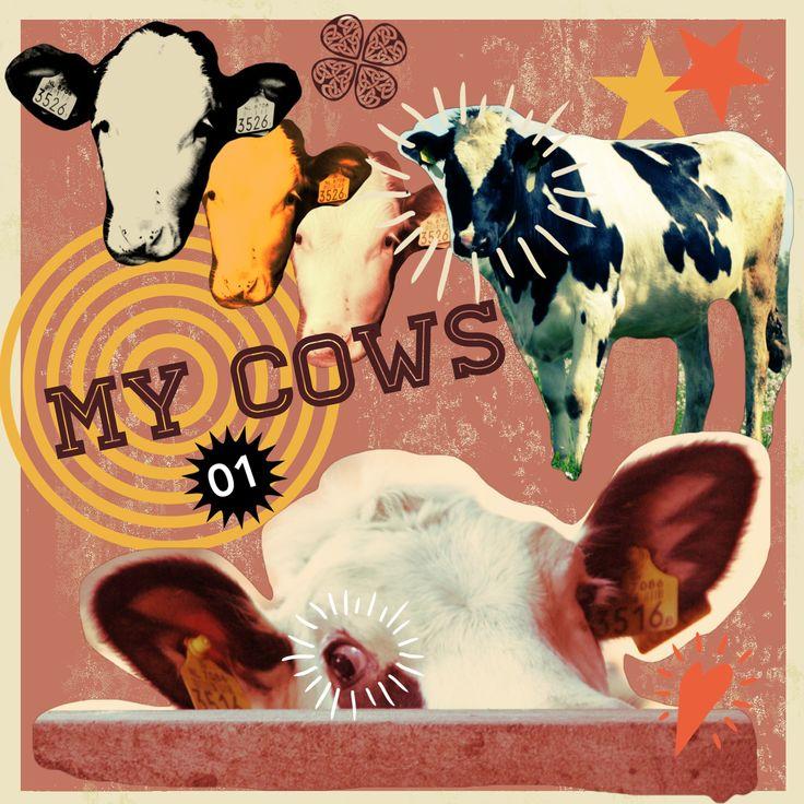 Hoofd leegmaken. De iPadapp Retromatic is daarvoor bijzonder geschikt. Mijn jongvee en koeien zijn dankbare onderwerpen.