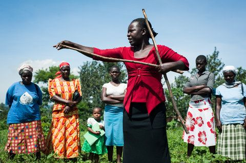 One Acre Fund field officer Caroline Atieno demonstrates how farmers can use a stick to space rows for planting in Kakamega, Kenya. New York Times Opinionator