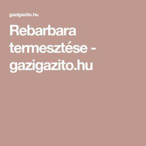 Rebarbara termesztése - gazigazito.hu