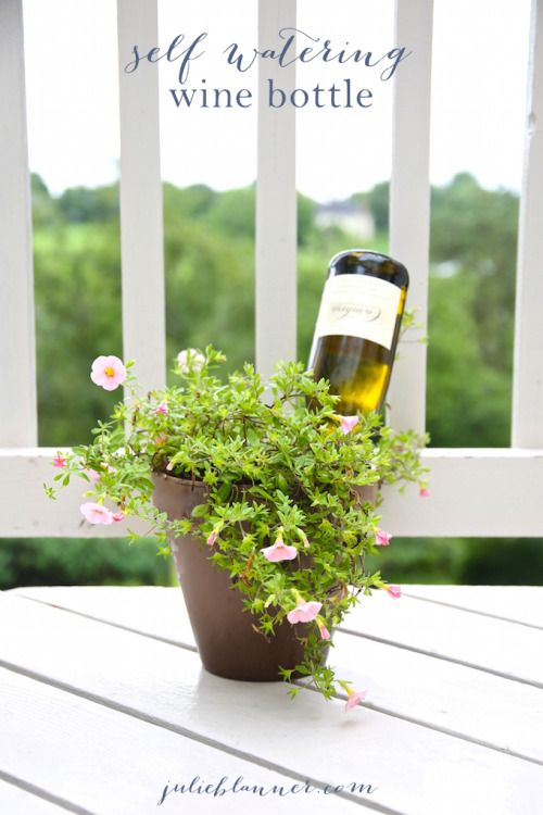 DIY 5 Minute Self Watering Bottle for Plants Tutorial from Julie Blanner.Take 5 minutes to create your own self watering plant system. This really works well for house plants if you're away for a few days. You can also use smaller beer bottles.