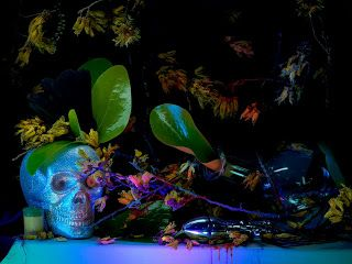 """Still life with a silver skull, kodak canister and the pear of anguish"" 2013 Fiona Pardington (Auckland, New Zealand 1961)"