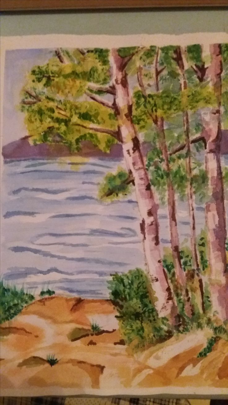 birch trees over water in watercolour