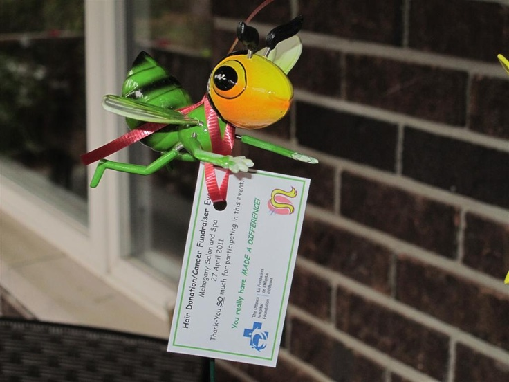 All our hair donators get a Thank-You bug...this is from our 2011 event.