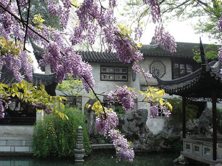 Lovely Garden of the Humble Administrator Suzhou China
