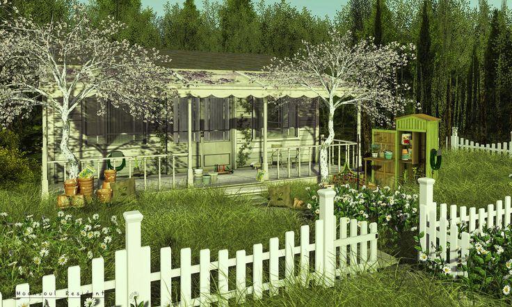Sun Forest Cottage