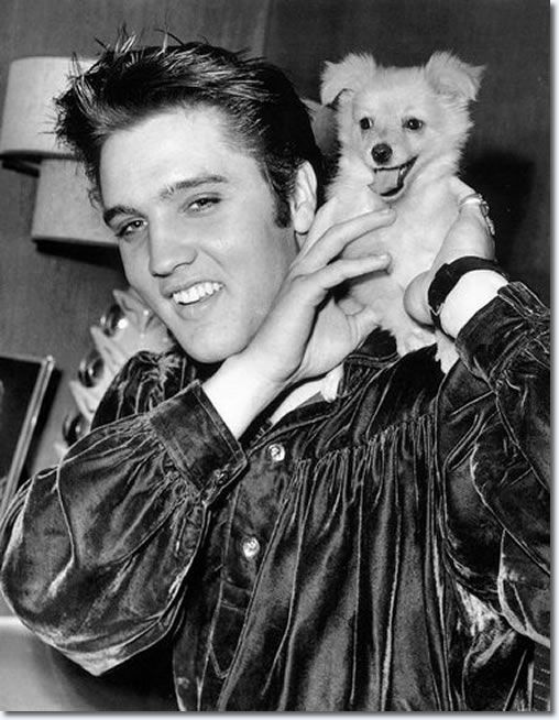 Elvis Presley with Sweet Pea, the dog he gave to his mother in 1956.