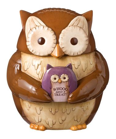 Take a look at this Brown Owl Cookie Jar by Amscan on #zulily today!